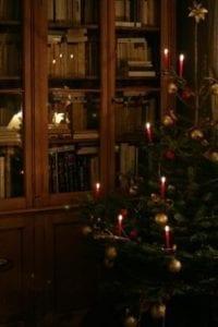 Veselé Vánoce všem!