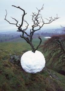 Andy Goldsworthy - Ice Ball (Ledová koule)