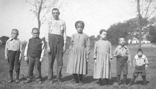 Inbreeding - Příbuzenské křížení